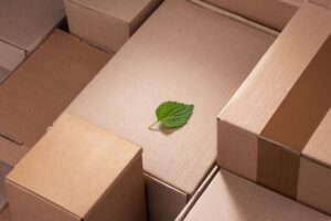 Eco Friendly e-commerce packaging